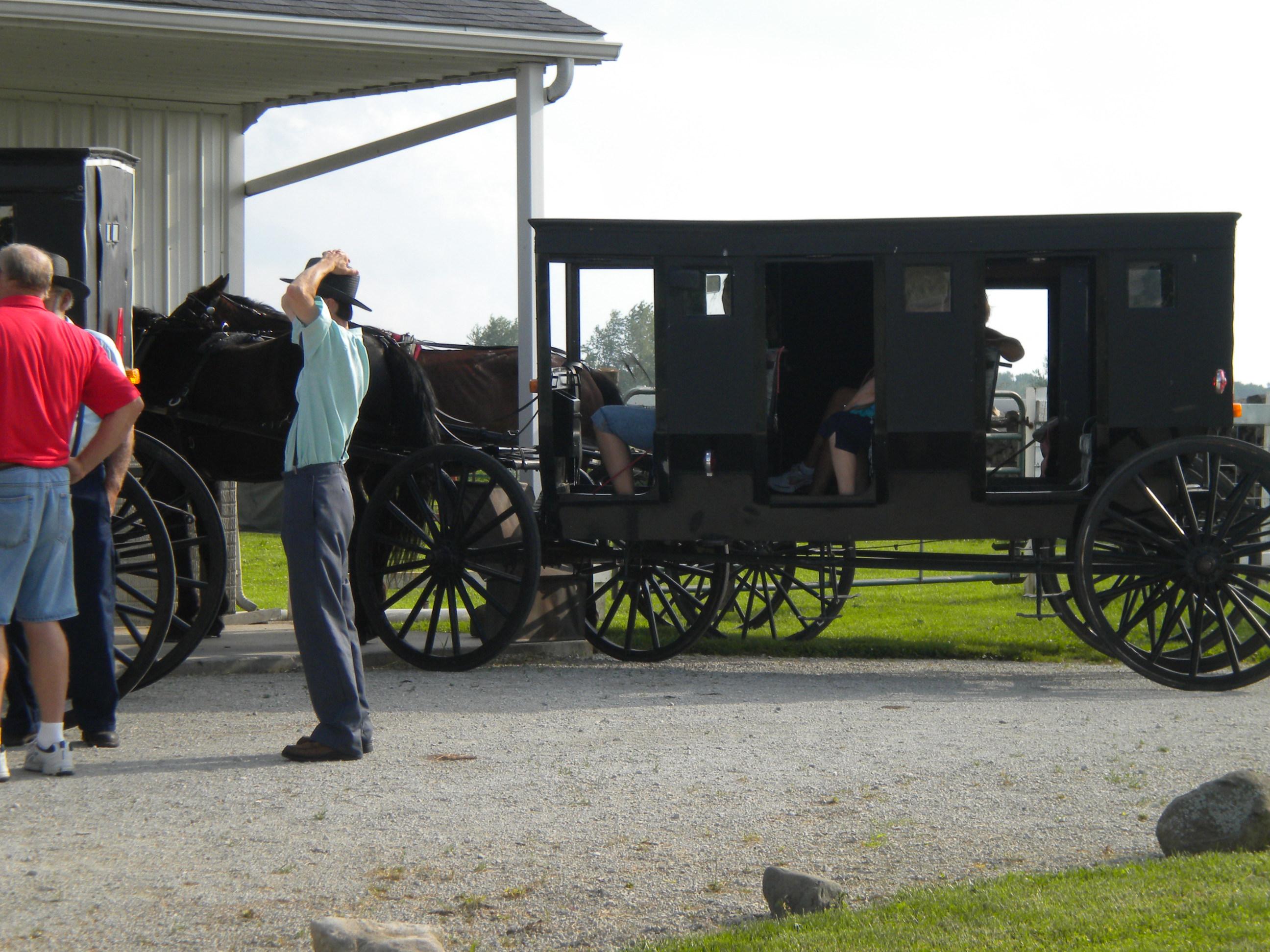 Amish Clothing Vannetta Chapman